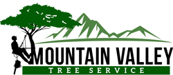 Mountain Valley Tree Service